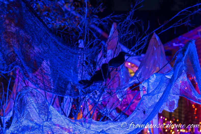 Spooky outdoor Halloween decor created with crows, creepy cloth and a blue spotlight