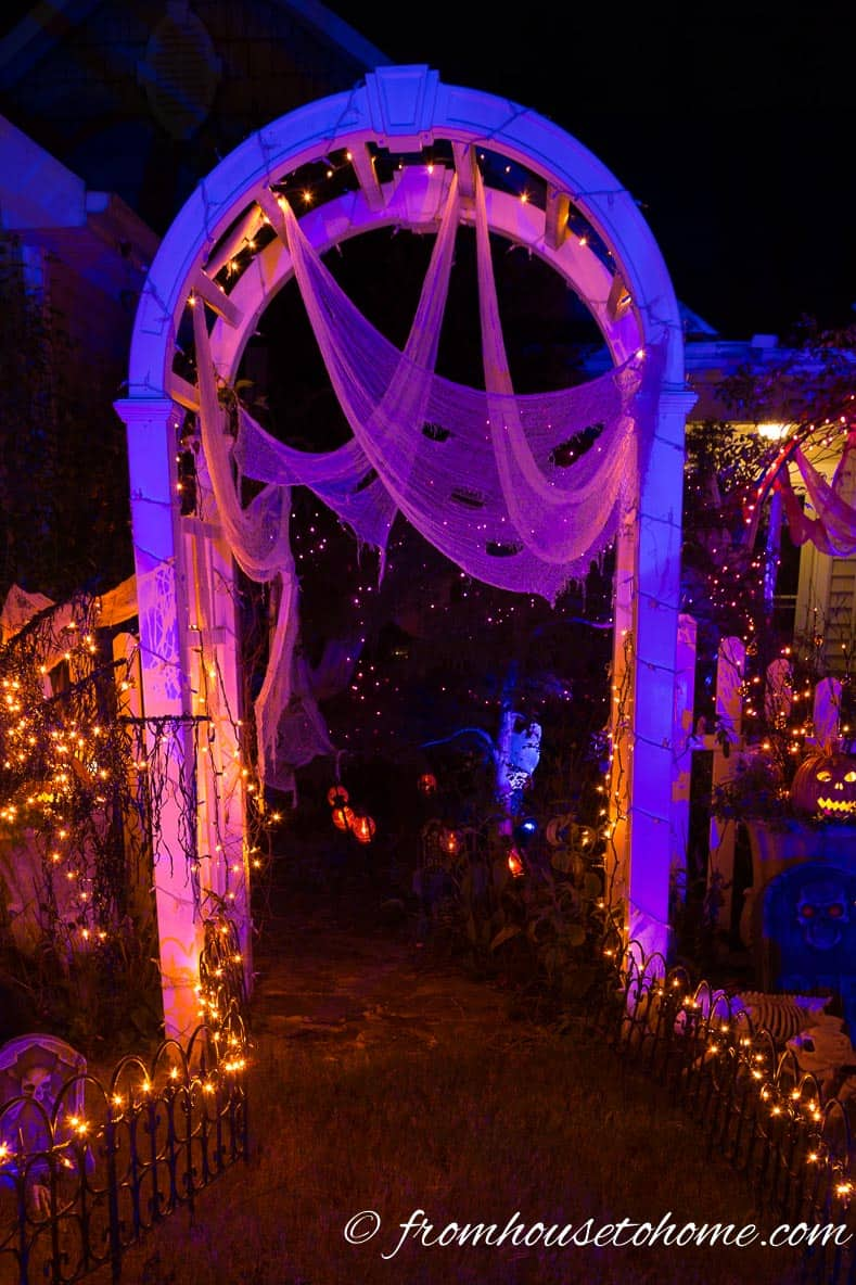Front yard arbor decorated for Halloween with blue and purple lights and white creepy cloth