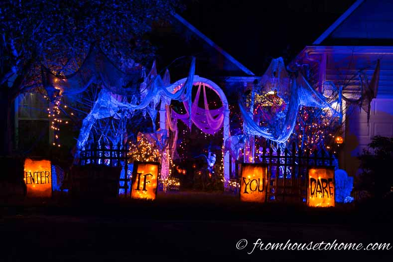 Blue, pink and orange Halloween outdoor lighting in a front yard