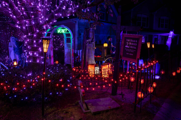 String lights lining the walkway and outlining the trees and bushes for an outdoor Halloween yard display